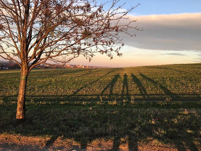 Výlety Jižní Morava